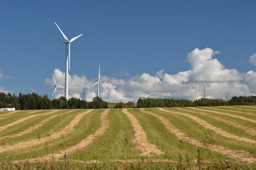 grain farm or wind farm?  turbines were prominent in the area